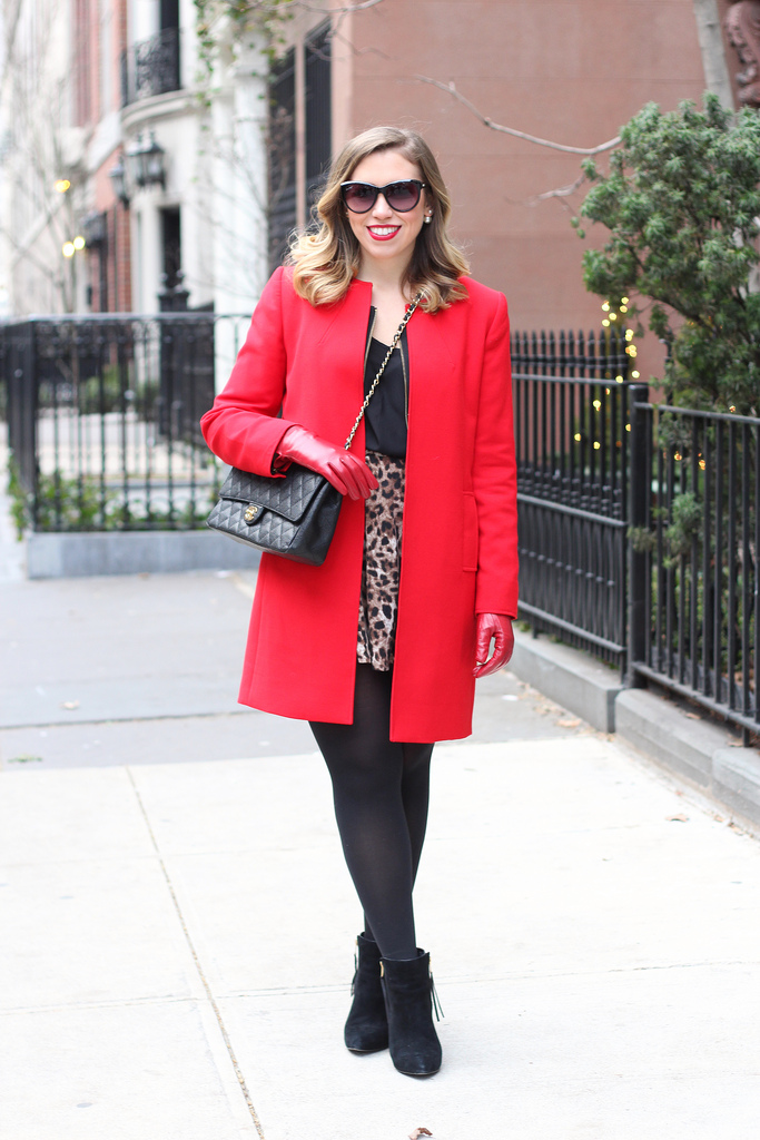Leopard & Red